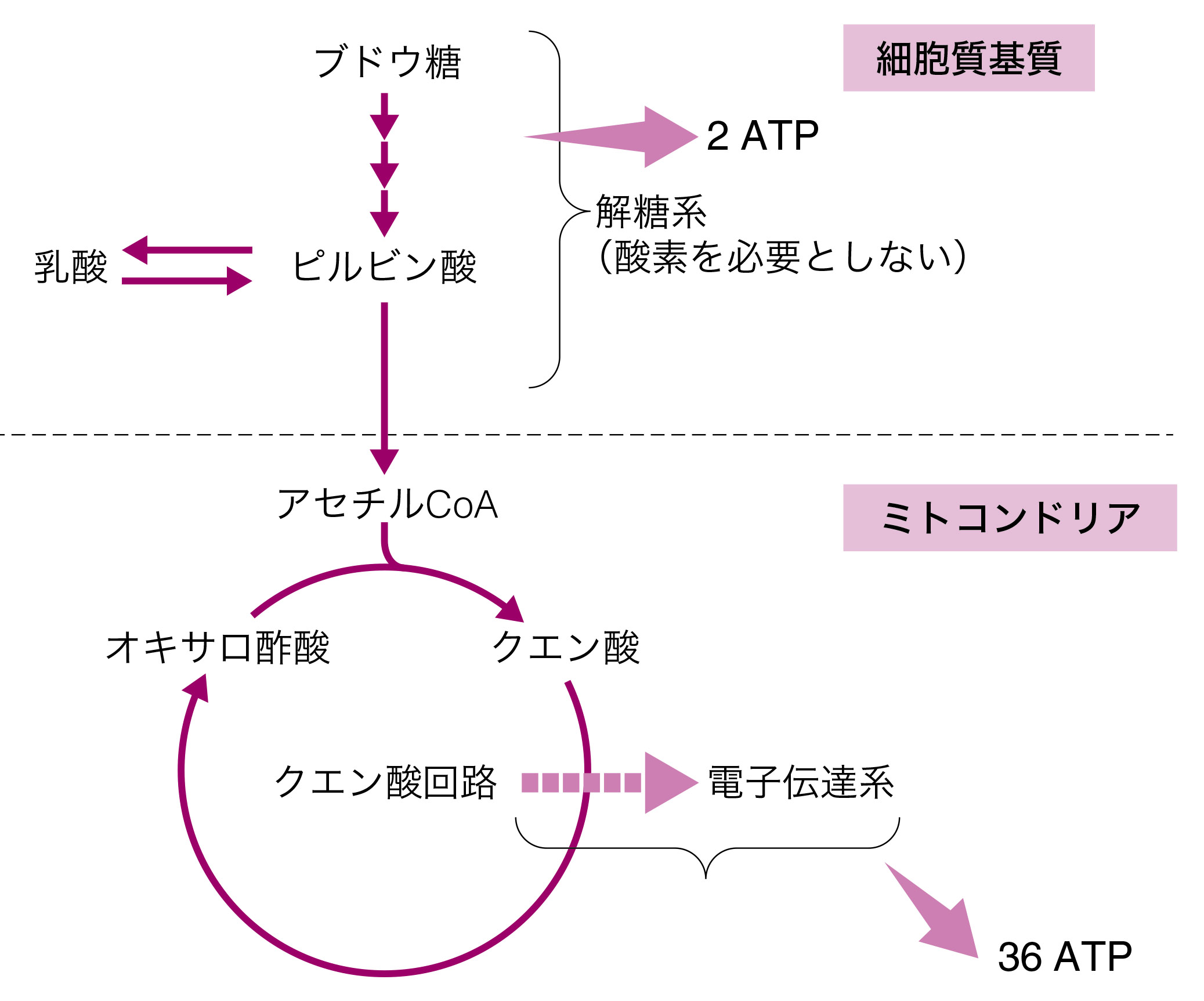 28-1 (1).jpg