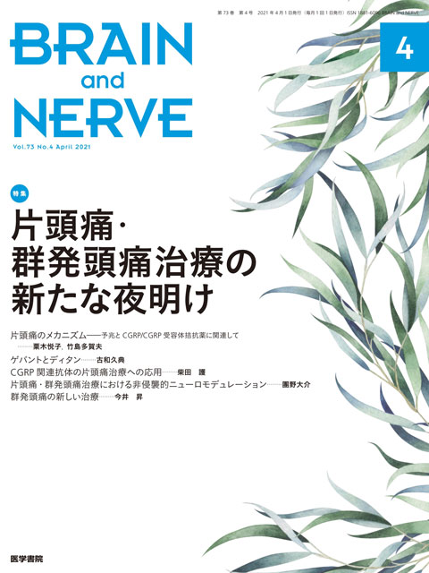 BRAIN and NERVE Vol.73 No.4